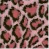 bobcat-pink.jpg