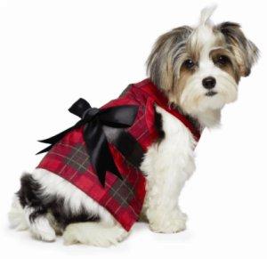 Dog Clothes Online