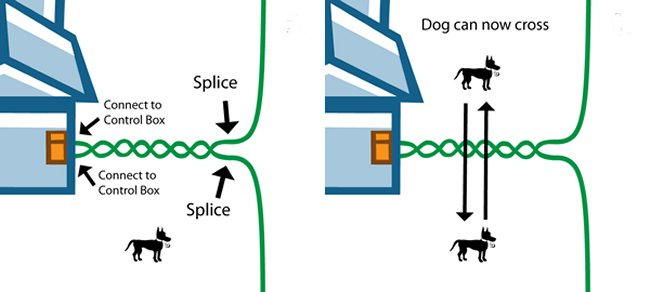 invisible fence wiring electric fence wiring diagram essential pet twisted dog fence wire 16 gauge 100 feet #4