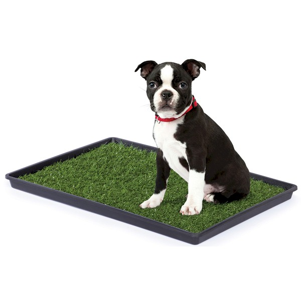 Large Tinkle Turf Indoor Dog Potty By Prevue