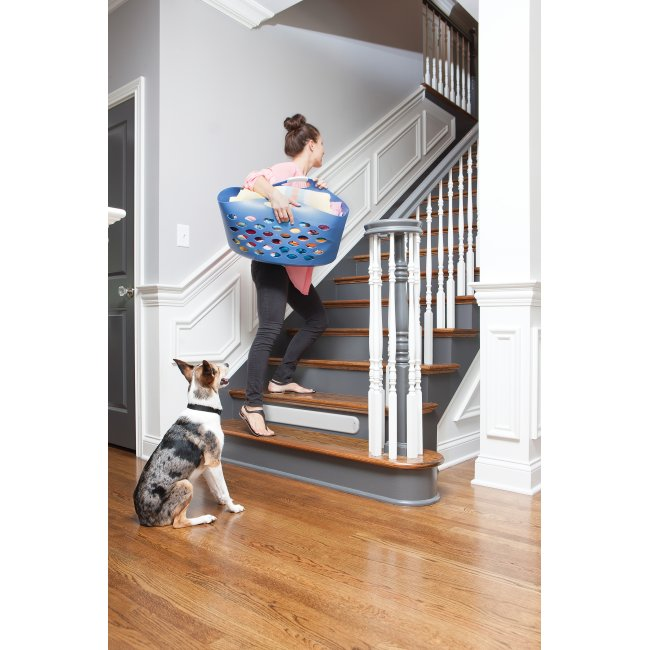 PetSafe Pawz Away Threshold Pet Barrier - PWF00-14406+CB51