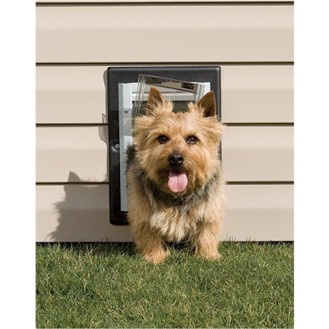 Petsafe Small Wall Entry Pet Door Ppa11 10915