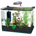 Radius 5 Gallon Glass Aquarium
