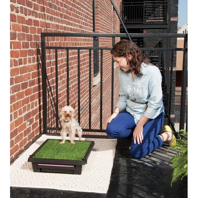 Small Pet Loo Pet Potty Training Pwm00 14497