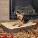 Small Memory Sleeper Pet Bed