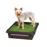 Pet Loo Indoor Pet Potty - Small