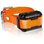 Dogtra iQ Plus Extra Collar
