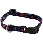 Boston Red Sox Dog Collar