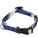 Tampa Bay Rays Dog Collar