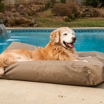 Waterproof Rectangle Dog Bed