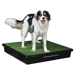 Pet Loo Dog Potty Training System - Medium