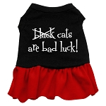 Black Cats are Bad Luck - Red