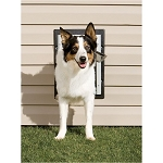 PetSafe Wall Entry Pet Door - Medium