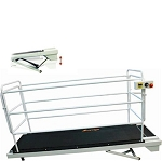 GoPet Giant Dog Treadmill