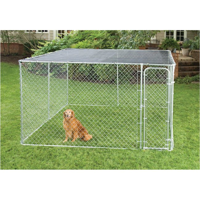 Aquarium Dog Kennel