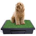 Pet Loo Dog Potty Training System - Large
