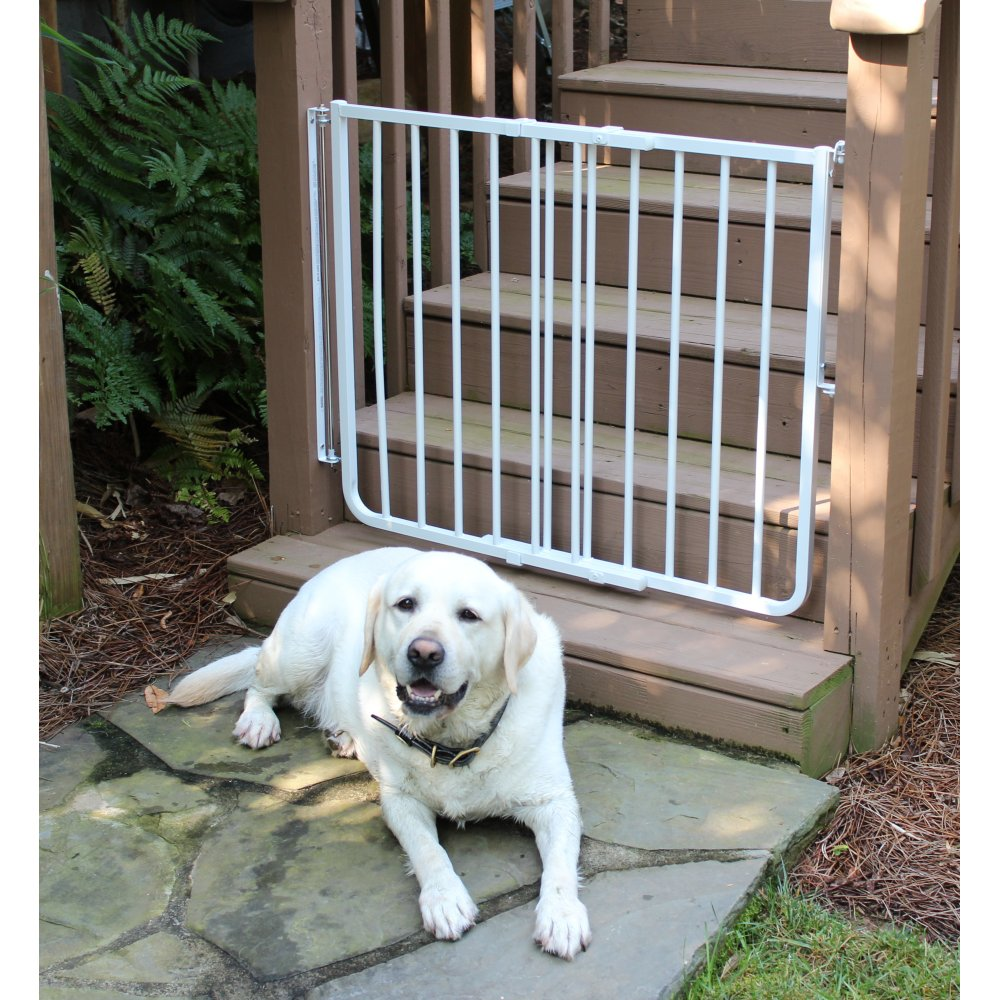 Stairway Special Outdoor Pet Gate Ss 30od Cardinal Gates