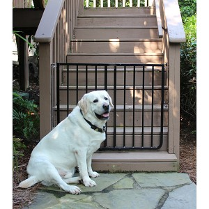Stairway Special Outdoor Dog Gate