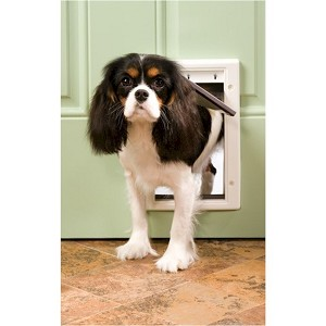 Small PetSafe Plastic Dog Door