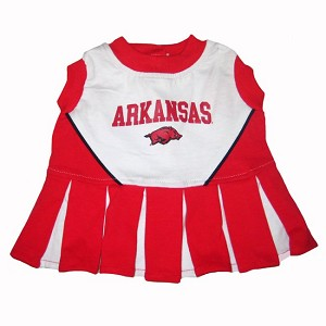 Arkansas Razorbacks Cheerleader Outfit for Dogs