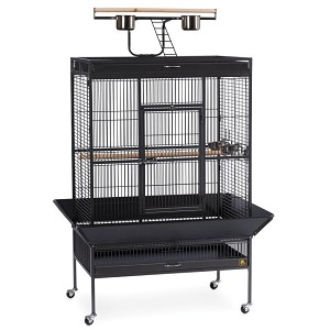 Select Wrought Iron Play Top Parrot Cage in Black